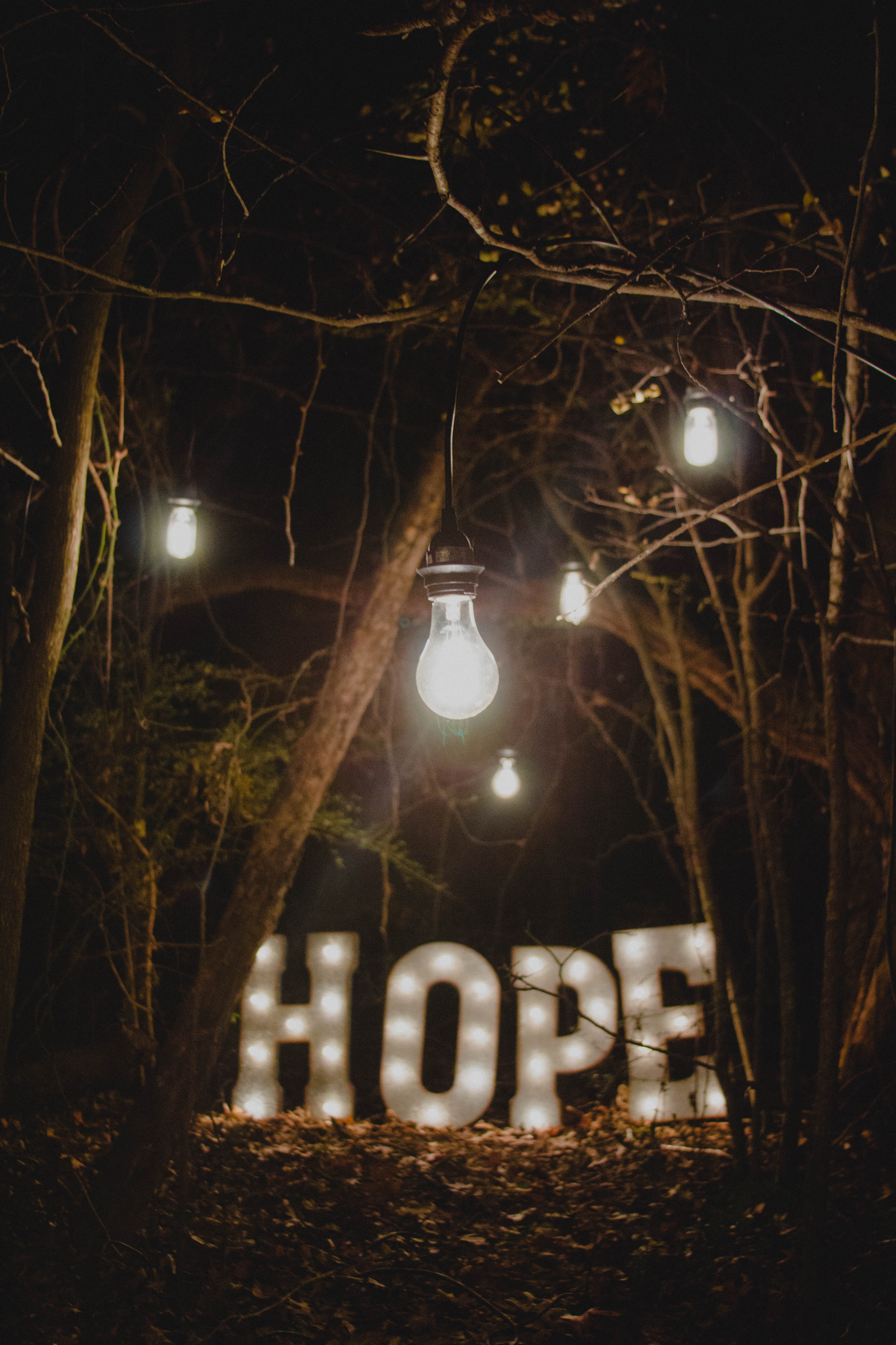 "lights in the woods, including the word ""Hope."""